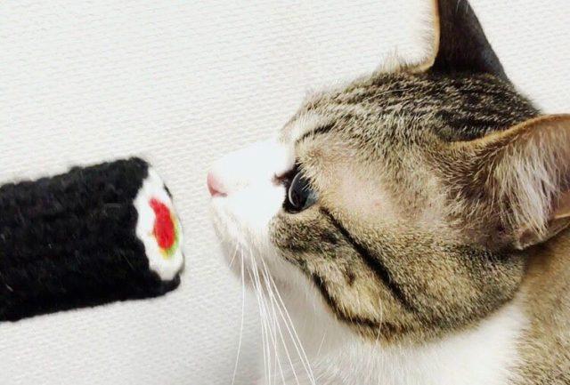 恵方巻と猫